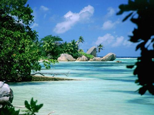 Куда пойти учиться? Трудный выбор! Вы тоже сможете в будущем бывать на подобных островах так часто, как захотите ...но только, если выберете себе правильную специальность!